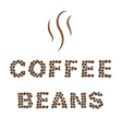 Coffee beans Type on white area background vector image