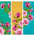 Pink rose frames set vector image vector image