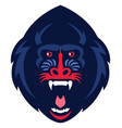 mandrill monkey head vector image