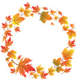 Maple leaves circle with copy space vector image vector image
