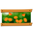 background design with orange flowers vector image vector image