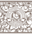 vintage peach label on seamless pattern vector image