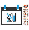 dna analysis calendar day icon with dating bonus vector image