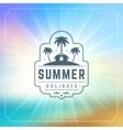 Summer Holidays Typography Label Design on Grunge vector image
