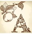 apple brown vector image