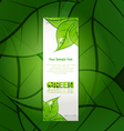 vertical paper strip with green leaves and drops o vector image