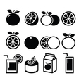 Orange icons set - food nature concept icons vector image