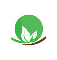 circle leaf ecology logo image vector image
