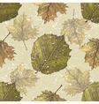 hazel leaves seamless vector image vector image