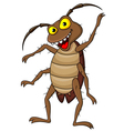 Cockroach cartoon vector image
