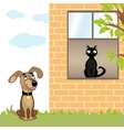 Dog and cat home vector image