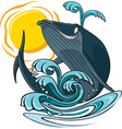 whale and water vector image vector image