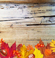 Autumn Border With Wood vector image