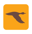 flying duck icon vector image