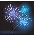 Holiday firework vector image