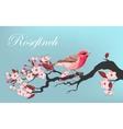 Bird on the cherry branch vector image