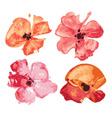 Watercolor flowers set design elements vector image