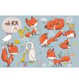 set with cute fox and farm birds vector image