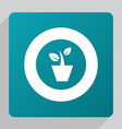 flat plant icon vector image