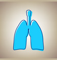 human anatomy lungs sign sky blue icon vector image