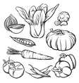 vegetables outline Hand drawn tomato and garlic vector image