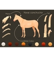 Create your own horse design withconstructor vector image