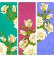 White Rose frames set vector image vector image