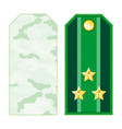 green military shoulder straps vector image