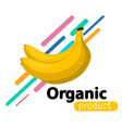 banana simple background vector image