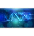 DNA medical background vector image