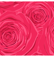 Beautiful seamless background with pink roses vector image