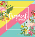tropical fruits flowers and flamingo birds banner vector image