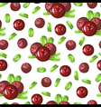 cowberry pattern vector image vector image