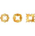 gold symbol vector image