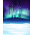 Northern lights background vector image
