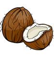 coconut cartoon vector image