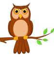 owl cartoon standing on tree vector image vector image