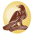 eagle perching on branch vector image