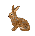 A sideview of a rabbit on a white background vector image