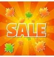 Autumn sale poster vector image