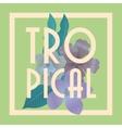 Tropical icon design vector image
