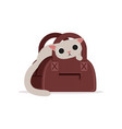lovely funny white cat in a brown bag home pet vector image