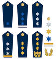 German police insignia vector image vector image