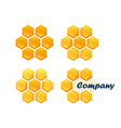 Set of Honeycombs vector image