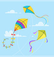 set of kites vector image
