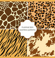 skin seamless patterns vector image vector image