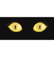 yellow cat eyes vector image vector image
