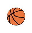 basketball ball sport competition element vector image