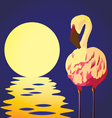 flamingo in the sun vector image