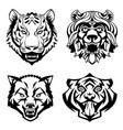 Set heads of wild animals vector image